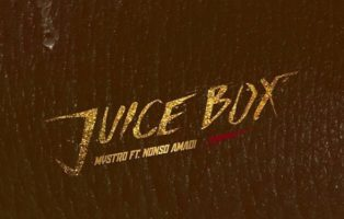 Mystro ft. Nonso Amadi – Juice Box