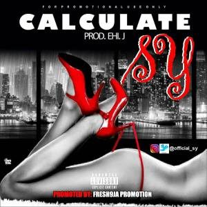 S-Y - Calculate