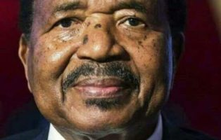 President Of Cameroon