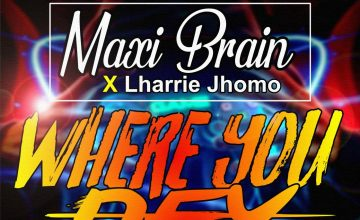 Maxi Brain - Where You Dey