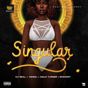 DJ Real - Singular