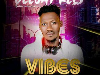 DJ Kels - Vibes Mix